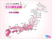 sakura_front_600x450